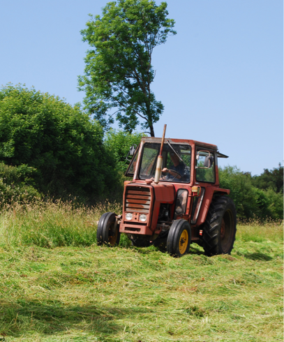 mowing-picture